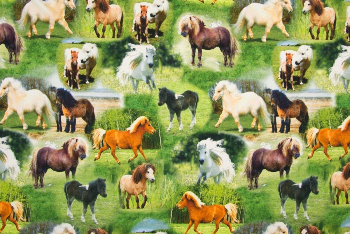 Tricot digitale print pony's
